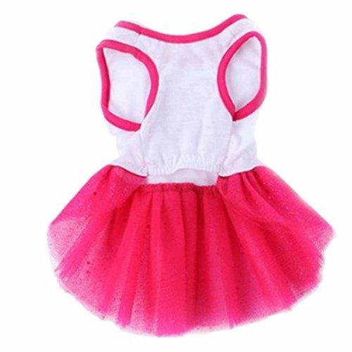 IUNEED Fashion Pet Dog Dress Autumn Princess Dress Heart Printed Lace Skirt Clothes Pet Apparel Puppy Tutu (Pink, XS)