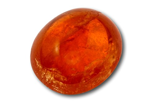 Grenat Spessartite Mandarin naturel d'Afrique, cabochon de 14,82 carats 14,0 x 12,4 x 8,3 mm