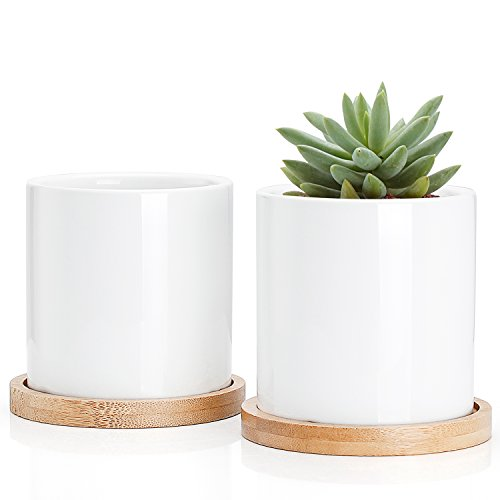 nt Plant Pots - 3 Inch Ceramic Cylindrical Containers, Small Cactus Planters, Flower Pots with Drainage Hole, Bamboo Tray, Set of 2, White ()