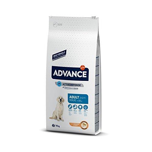ADVANCE Adult Maxi – Pienso Para Perros Adultos De Razas Grandes Con Pollo – 14 kg