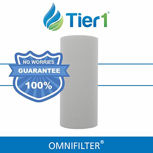 Omnifilter RS16 1 Micron 10 x 4.5 Inch Comparable Whole Hous