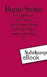 Bunte Steine: Ein Lapidarium des Wissens (edition suhrkamp)