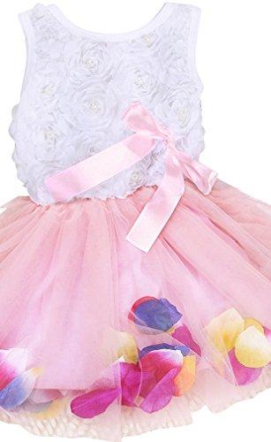 - Kids Girls Princess Rose Garden Flower Petal Lace Ruffled Tulle Skirts Dresses  Pink 3T