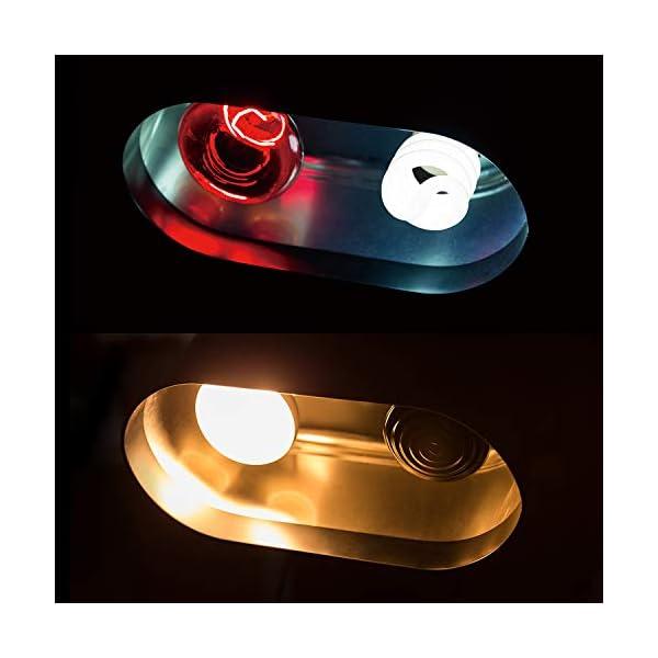 REPTI ZOO Dual Reptile Light Fixture for Reptile Dome UVB Light Fixture Dual Lamp Cap Combo Integration Design Heat Lighting Lamp Kit 4