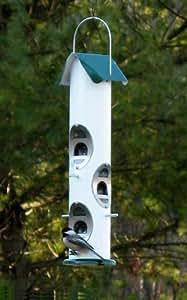 Mezcla de semillas ardilla prueba verde pájaro feeder2Quart