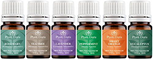 Essential Oil Variety Set Kit - 6 Pack - 100% Pure Therapeutic Grade 5 ml. Set includes- (Peppermint, Lavender, Sweet Orange, Rosemary, Eucalyptus & Tea Tree) (Young Oils Starter Kit compare prices)
