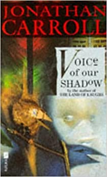 Book Voice Of Our Shadow