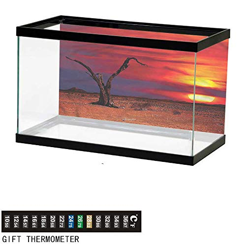 bybyhome Fish Tank Backdrop Desert,Sunset View with Dried Tree,Aquarium Background,36