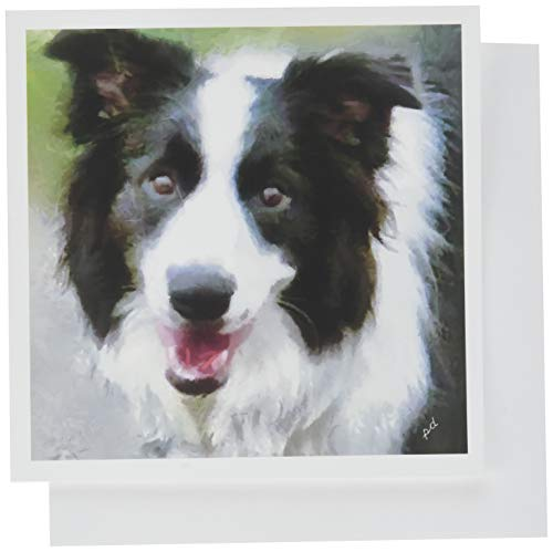Border Collie - Archie - Set of 6 Notecards with Envelopes by Doggylips ()