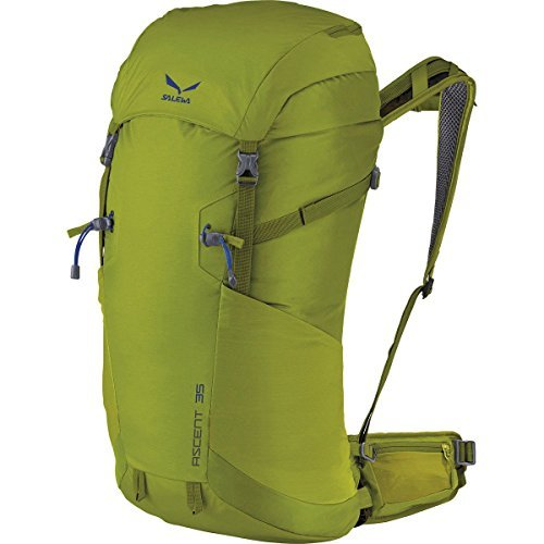 Salewa Ascent