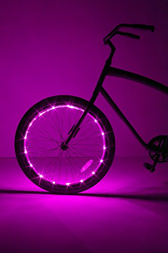 Outdoor Riding Ring Lighting in US - 5