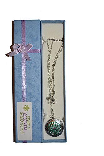Antique Aromatherapy Personal Diffuser Necklace product image