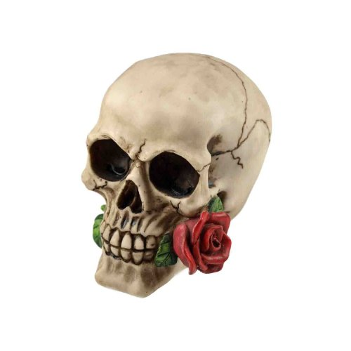 Nemesis Now Rose Dead Skull Figurine (15cm)
