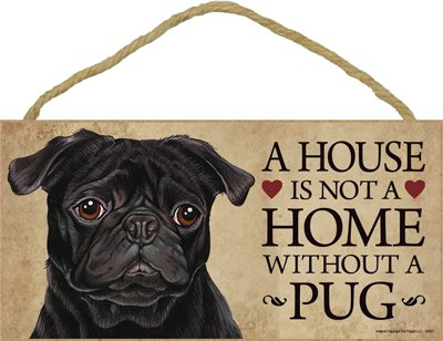 """Spoiled Rotten Pug Tan Lives Here Sign 5/"""" x 15/"""" Plaque Gift pet dog"""