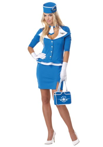 Sexy Stewardess Costumes (California Costumes womens Retro Stewardess Costume X-Small)