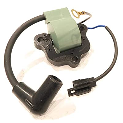 The ROP Shop | Ignition Coil for 1983 OMC Johnson Evinrude 40HP, E40RSRE, 40RSLR, E40RWLTR: Sports & Outdoors