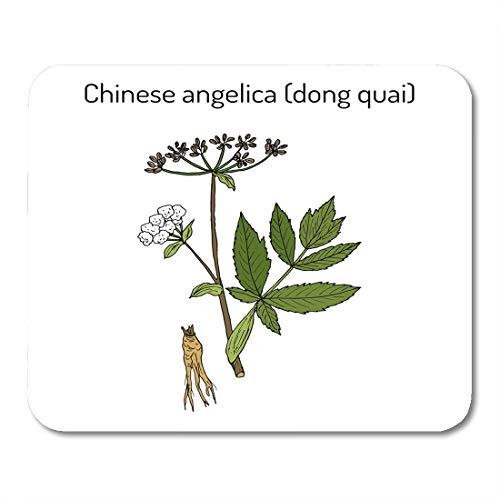 (Semtomn Mouse Pad Root Angelica Sinensis Dong Quai Female Ginseng Medicinal Herb Mousepad 9.8
