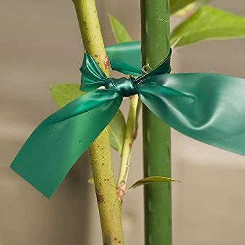 Gardener's Blue Ribbon T006B Sturdy Stretch Tie by Gardener's Blue Ribbon (Image #3)