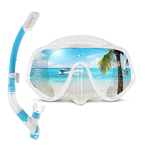 COPOZZ Snorkel Mask, Snorkeling Scuba Dive Glasses, Free Diving Tempered Glass Goggles - Optional Dry Snorkel with Comfortable Mouthpiece (4100-Transparent Set)