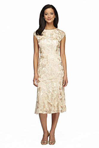 Alex Evenings Women's Sleeveless Embroidered Dress