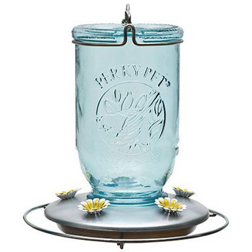 Ruby Hobnail - Perky-Pet 785 Mason Jar Hummingbird Feeder