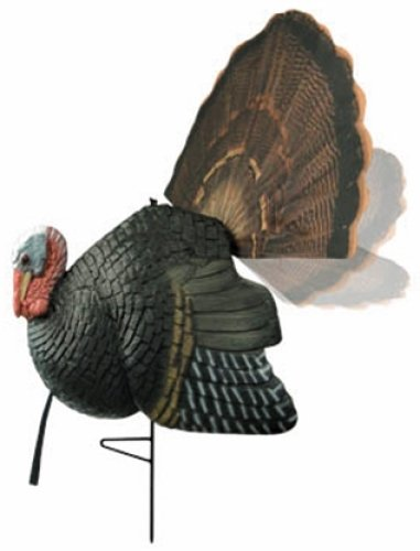 Price comparison product image W2B - Dirty B Injured Gobbler Decoy