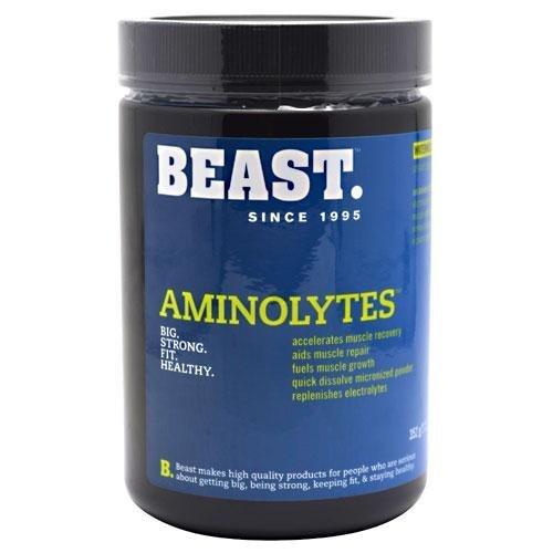 Beast Sports Nutrition, Aminolytes Advanced Amino Matrix, Watermelon, 14.6 Ounce