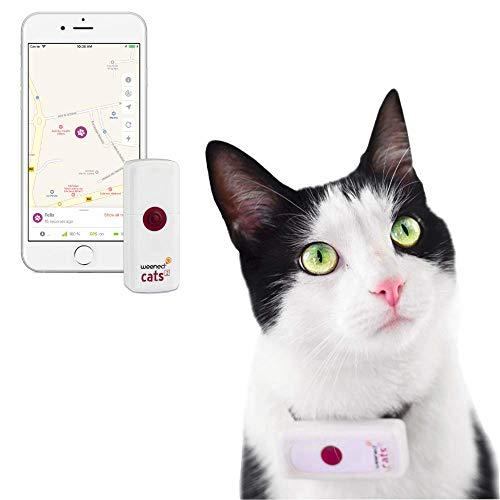Weenect Cats 2 – El collar GPS para gatos más pequeño del mundo