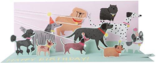 Card Panoramic (Up With Paper Pop-Up Panoramics Greeting Card - Dog Walker)