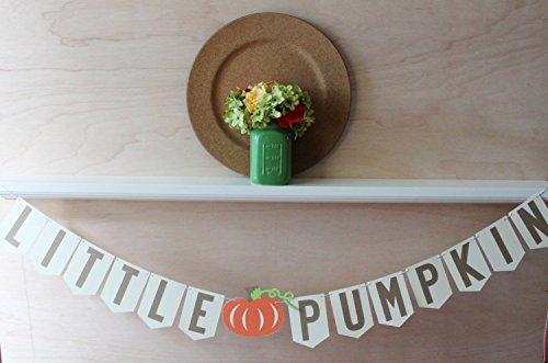 Little Pumpkin Banner - Little Pumpkin Baby Shower