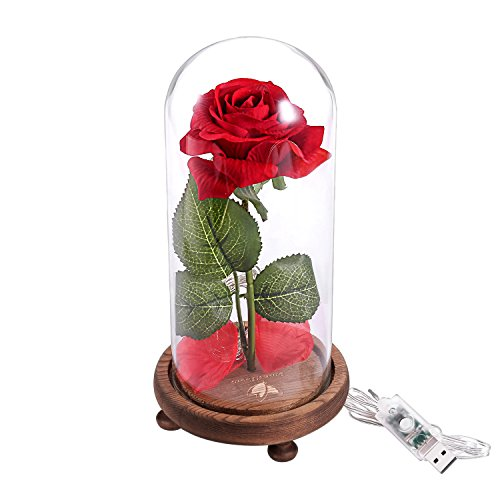 Dream of flowers Beauty and The Beast Rose,for Home Decor Holiday Party Wedding Anniversary Birthday,Red Silk Rose and Led Light with Fallen Petals in Glass Dome on Wooden Base (N1)