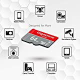 Gigastone 64GB 2-Pack Micro SD Card, Gaming