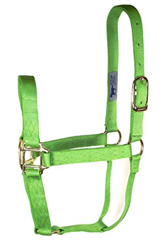 Quality Horse Halter - 3