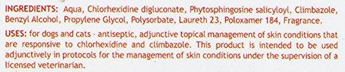 Douxo-AntiSeptic-Chlorhexidine-Climbazole-Mousse-68-oz