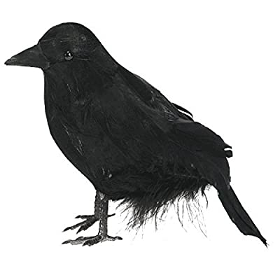 Halloween Haunted Feathered Raven: Toys & Games