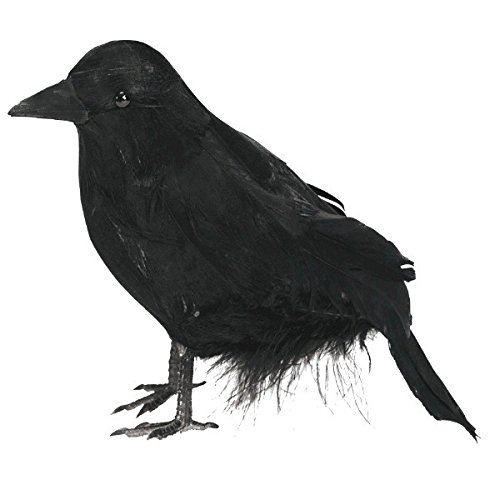 Amscan Small Black Haunted House Raven Halloween Trick or Treat Party Decoration, Plastic, 4