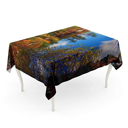 Tarolo Rectangle Tablecloth 60 x 102 Inch Blue England Forest Lake in Autumn Colorful Massachusetts Fall Summer Indian Foliage Table Cloth