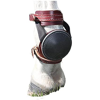 Amazon com : Tod Sloan Deluxe Skid Boots : Pet Supplies