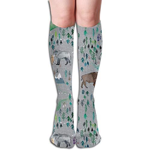 LLuotryce Novelty Casual Socks, Women, Running, Flight, Travels,Aurora Boreal Yukon Knee High Socks Stockings For Men & Women,Training