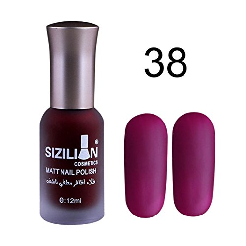 Lisin 12ml Matte Dull Nail Polish Fast Dry Long Lasting Nail