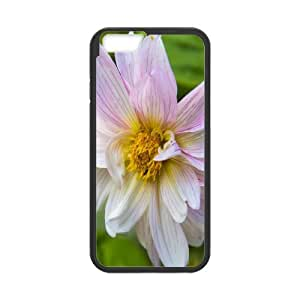 IPhone 6 Plus Cases Decent Daisy, IPhone 6 Plus Cases Daisy for Girls, [Black]