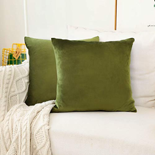 HOME BRILLIANT Set of 2 Velvet Accent Throw Pillow Covers Cushion Cover Decorative Pillowcases for Nursery Spring, 45cm x 45cm(18 x 18 inches), Avocado Green