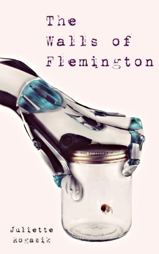 Book: The Walls of Flemington by Juliette Rogasik