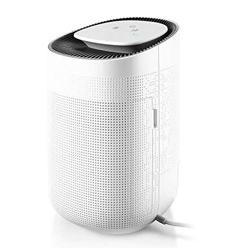 HQYXGS Dehumidifier, Electronic Mini 1L Portable with HEPA Filter Dehumidifier Household Bathroom ()