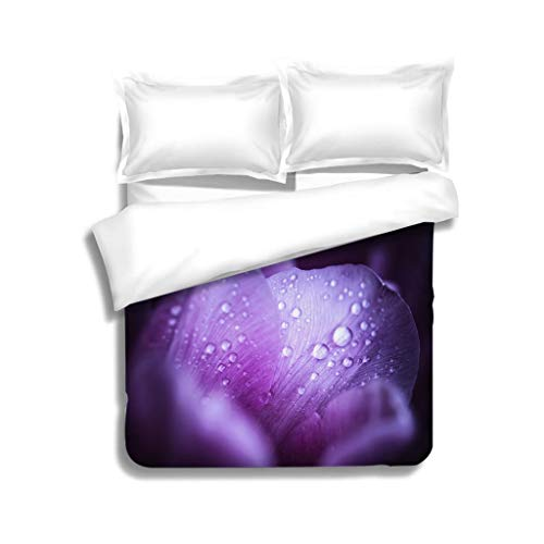 MTSJTliangwan Duvet Cover Set Macro Shot of Pink Tulips with Drops in its Petals 3 Piece Bedding Set with Pillow Shams, Queen/Full, Dark Orange White Teal Coral
