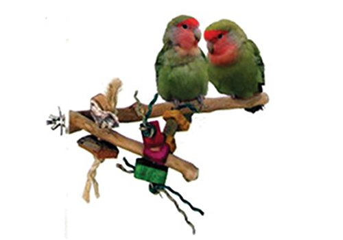 A&E CAGE COMPANY 001090 Java Wood Branch Bird Toy Assorted, Small
