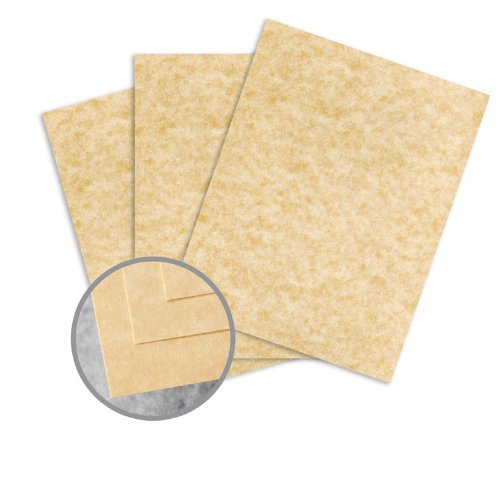 Skytone Champagne Paper - 8 1/2 x 11 in 60 lb Text Vellum 30% Recycled 500 per Ream (Skytone Vellum)
