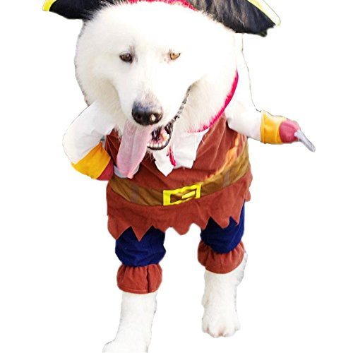 Funny Pet Clothes Dog Cat Cosplay Costume Suit Dressing up Party Apparel Clothing for Cat Dog Plus (Black Cats Of Halloween Rin And Len)