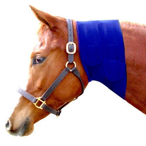 Neoprene Neck Sweat - Intrepid International Neoprene Jowl Sweat, Blue, 10-Inch