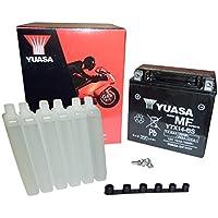 Yuasa YTX14-BS - Batería con paquete de ácido